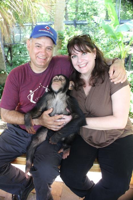 chimp (27)